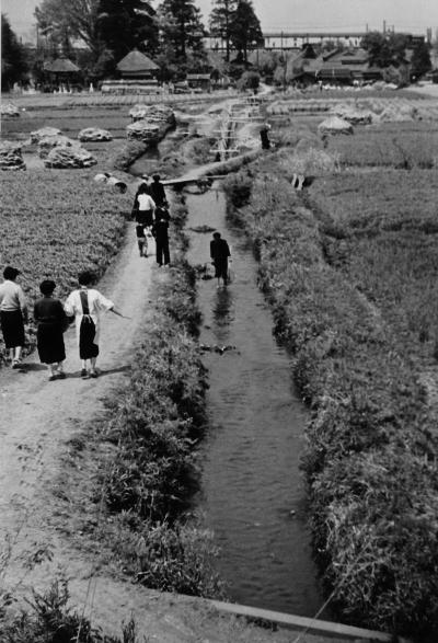 大昌寺坂の上り口から宝泉寺方面を望む 1956