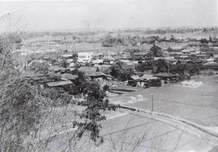 大昌寺山から日野駅方面を望む 1956(1)