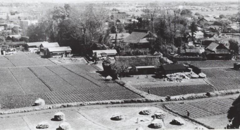 大昌寺山から大昌寺方面を望む 1956(3)