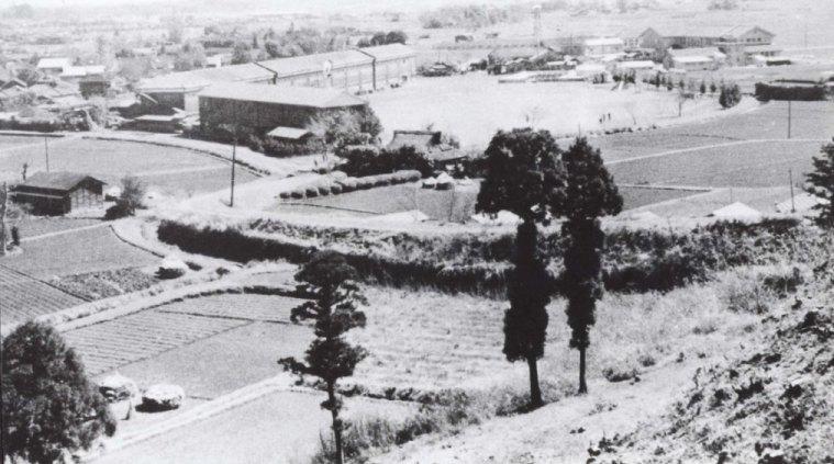 大昌寺山から一小方面を望む 1956(4)