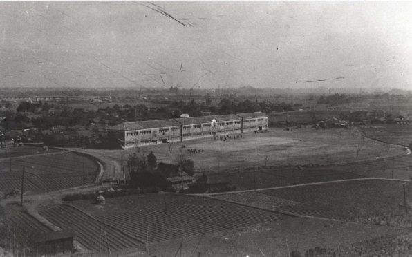 大昌寺山から日野小学校方面を望む 1951