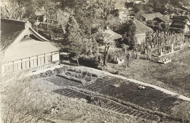 さくら咲く朝 1955