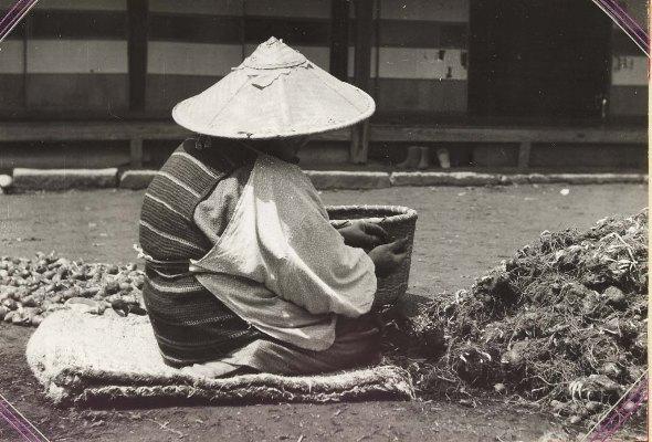 井上源三郎生家 1959頃