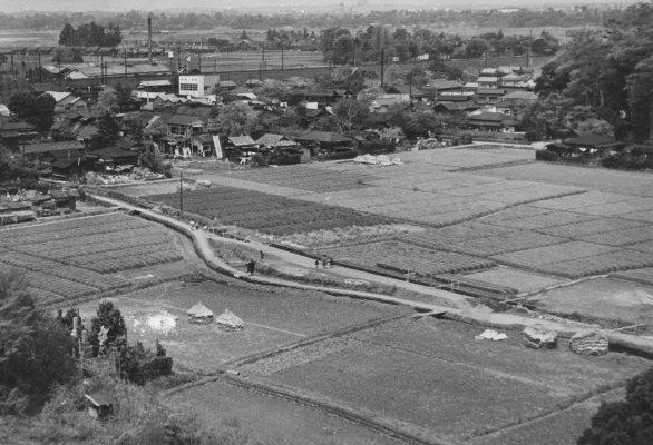 大昌寺山から北西方面の展望 1956