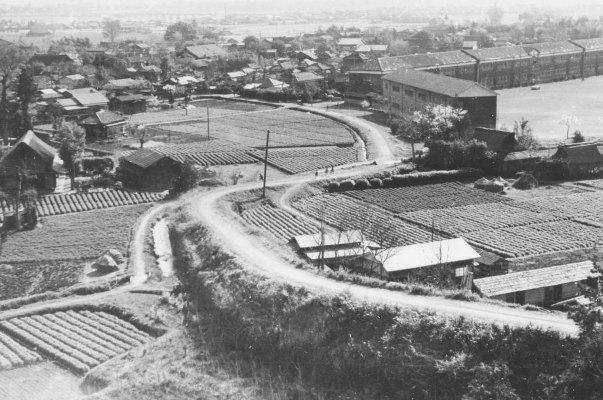 大昌寺坂、一小方面 1956