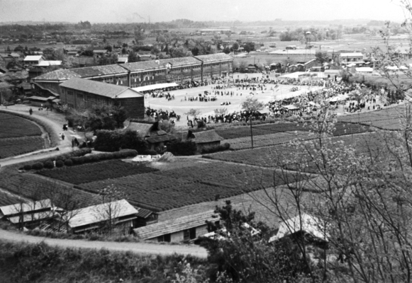 大昌寺山から一小方面を望む - 町民運動会 1956