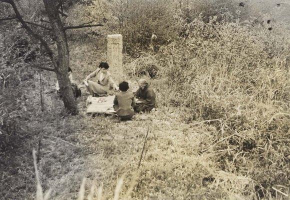 御駒止之松の碑 1956