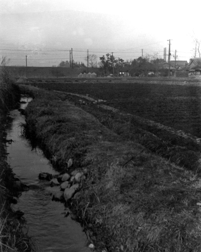 四ツ谷 - 薬王寺堀 1954