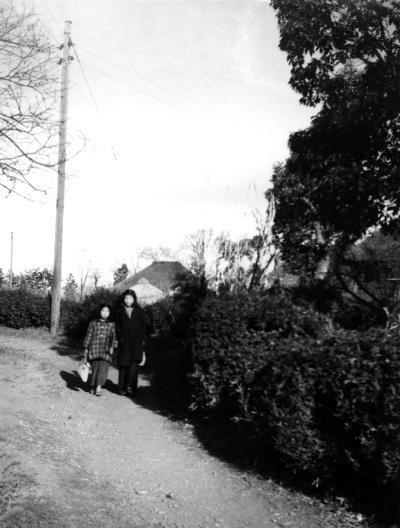 我が家の前、大さんの坂 1952