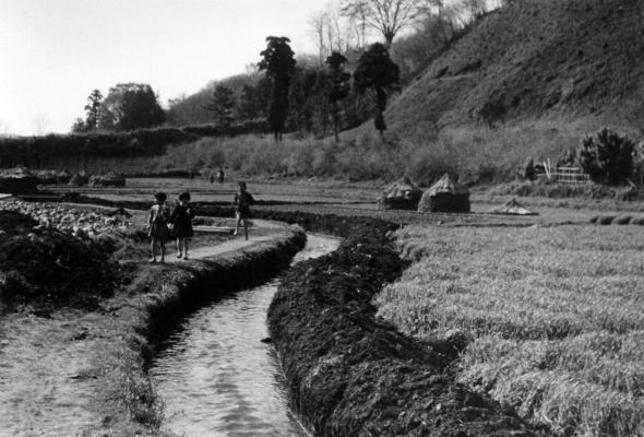 改修中の山下堀 1956