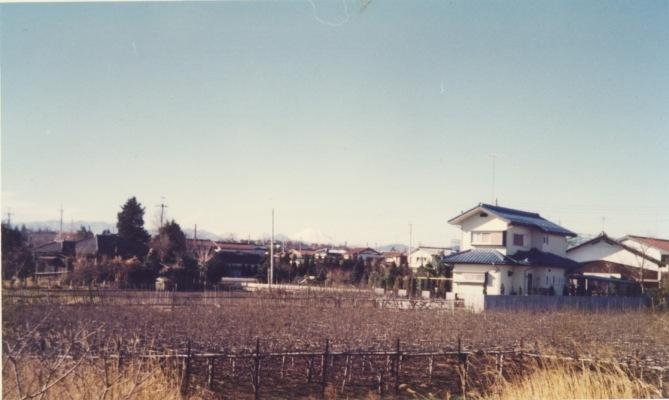多摩川より富士山を望む 1977
