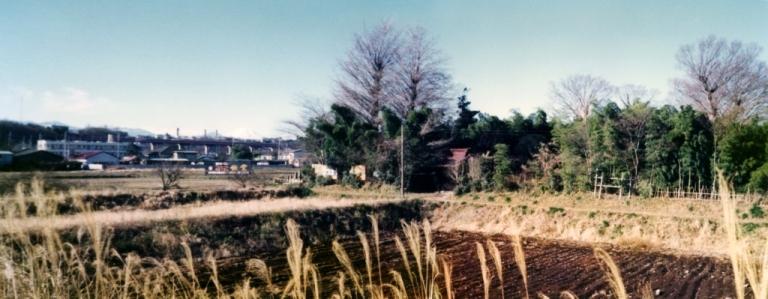 四ツ谷薬王寺 1977