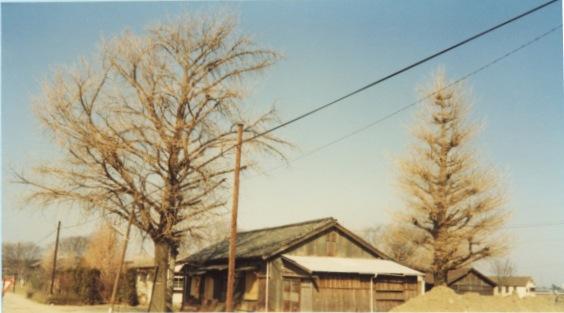 蚕糸試験場日野桑園作業所 1978