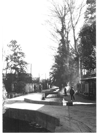 裏の川 1962頃 - 大昌寺西