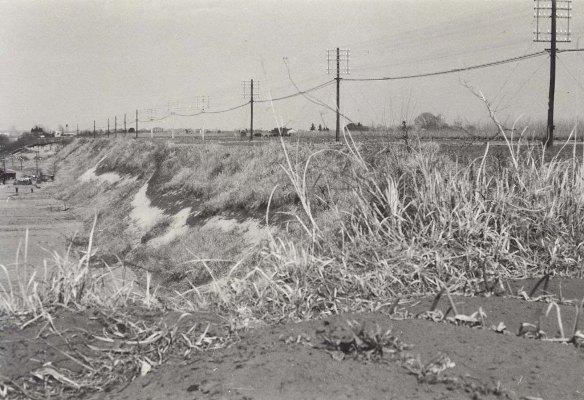 中央線沿線の畑 1960頃