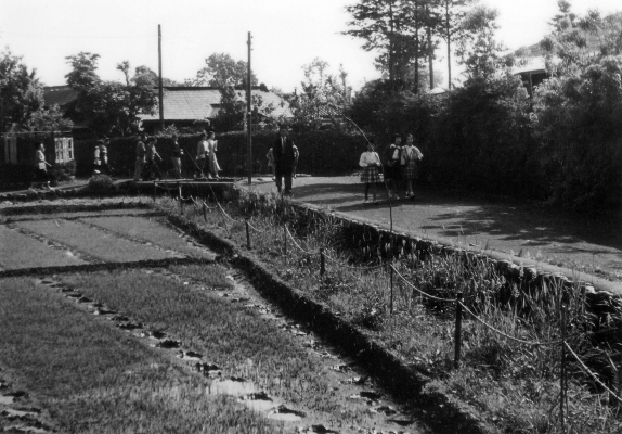 大門橋付近 1956