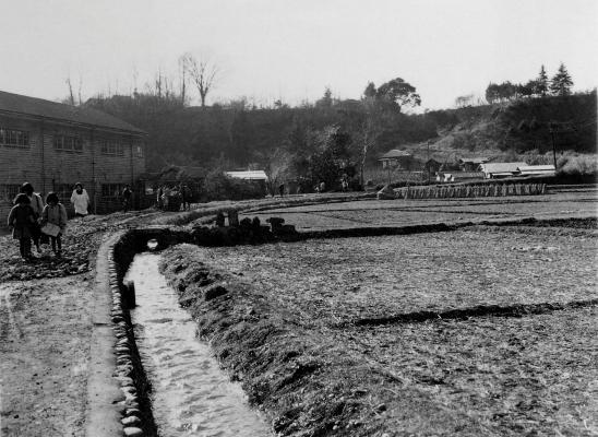 大門橋付近から大昌寺山を見る 1958