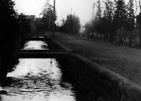 一小の裏の用水 1956