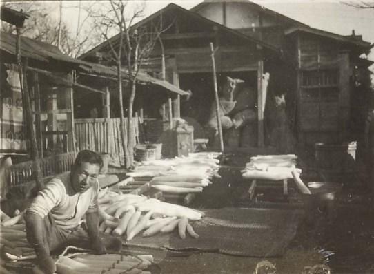 大根洗い 1953頃 ‐ 安西家