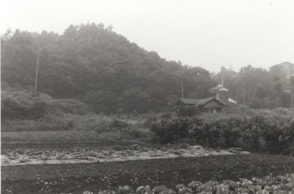 島崎宅 1967