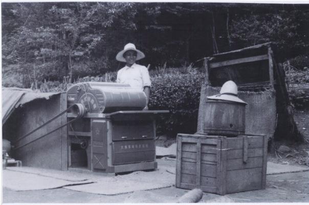 脱穀作業 1959 ‐ 小池家