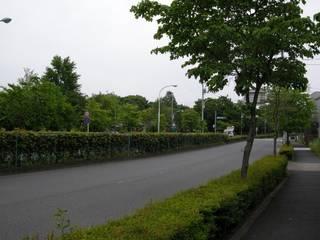 2009-06-03