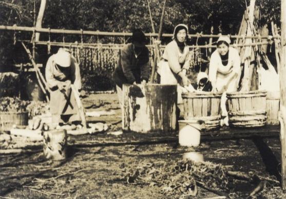 大根洗い - 谷家(3)昭和30年代中頃