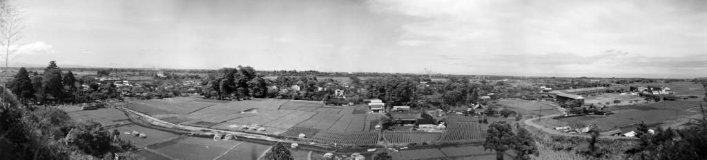 大昌寺山から宝泉寺・八坂神社・大昌寺・一小方面を望む 1956頃