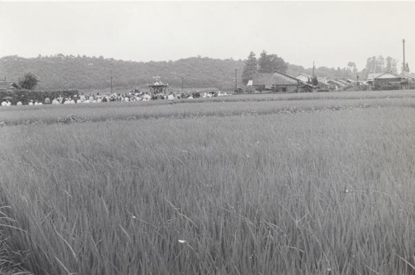 八坂神社の祭り 1955(26)宮神輿 - 東光寺道