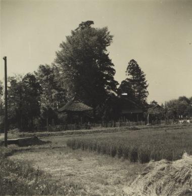 宝泉寺東側 - 鐘楼、閻魔堂 昭和30年代初頭
