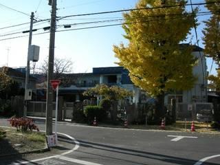 2009-11-17