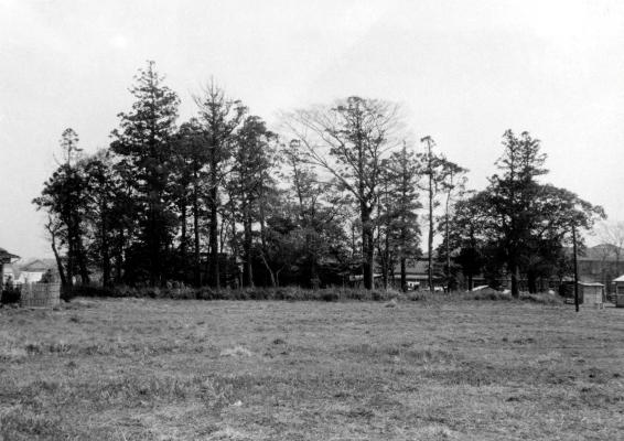 日野宮神社遠景 1965頃 - 南側