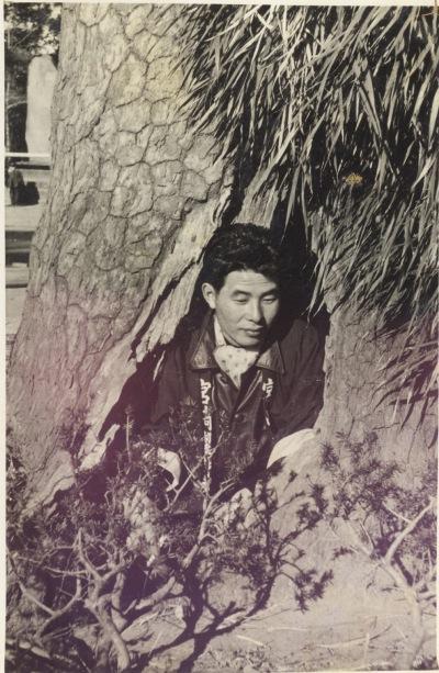 高幡不動尊の旗かけの松1955(2)