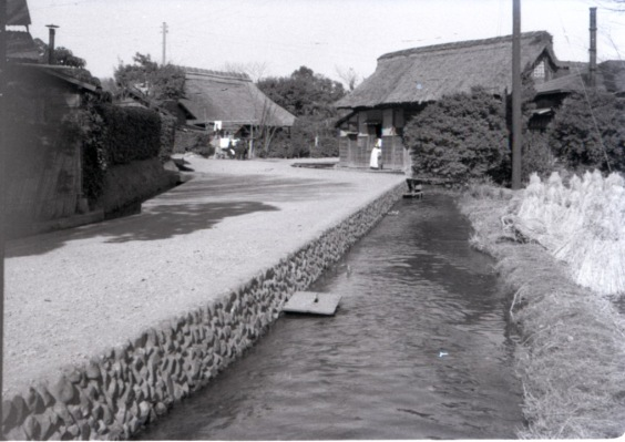 豊田用水 1951
