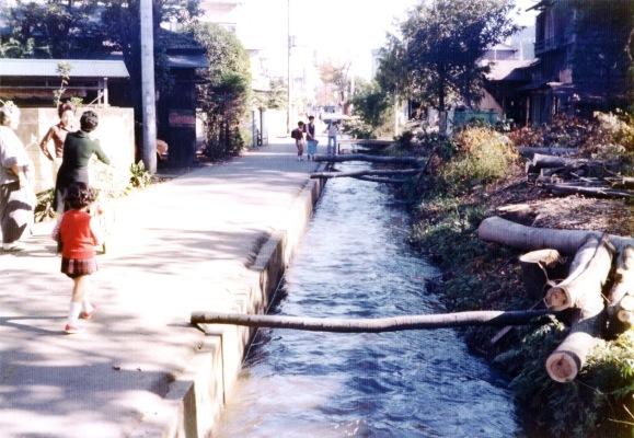 日野用水 1980 ‐ 大昌寺北側 ‐ 立木伐採