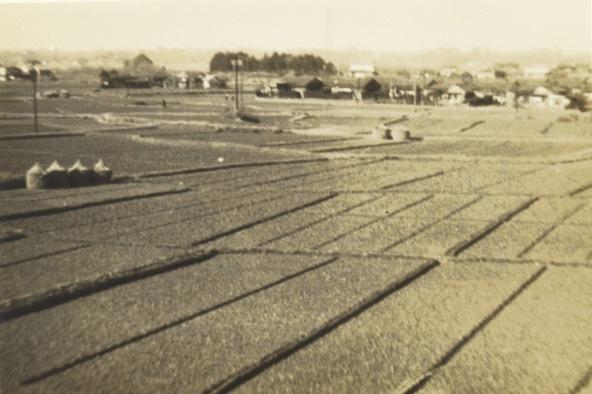 八丁田んぼ 昭和30年代