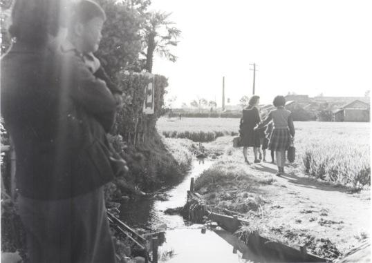 西町 1954 ‐ 清水金平宅門付近