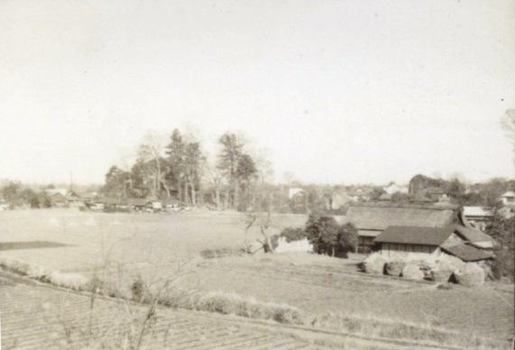 八坂神社遠景 1952頃