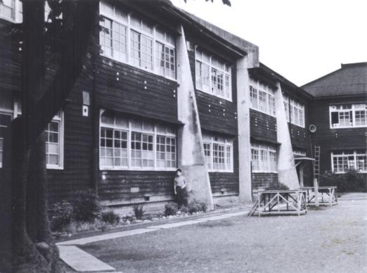 一中校舎 ‐ 青桐 1963頃