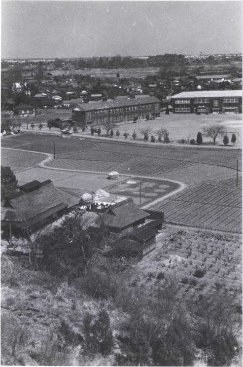 大昌寺山から一小方面 1960