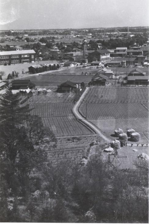 大昌寺山から日野消防署、町役場方面 1960
