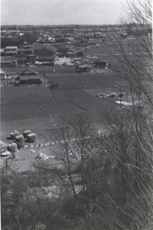 大昌寺山から日野消防署、町役場方面 1960(2)