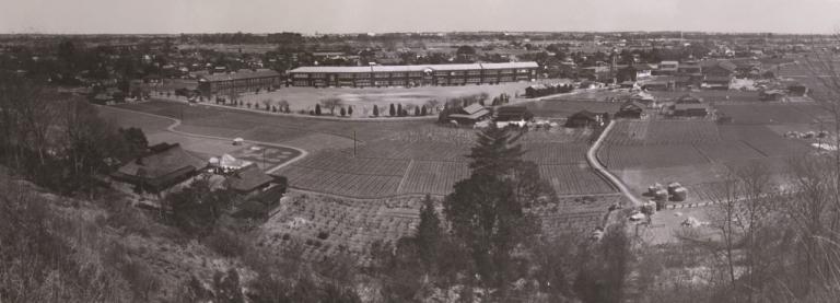 大昌寺山から日野一小、日野町役場方面 1960