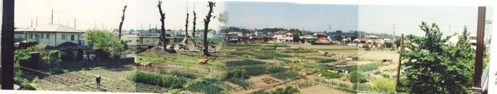 矢島家から薬王寺方面 1988