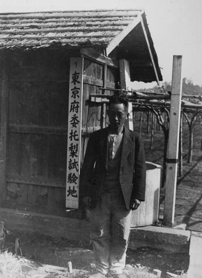 東京府委託梨試験地 ‐ 上田園 1935