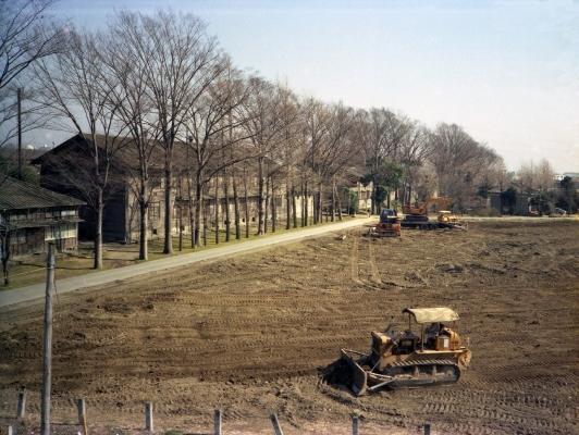 蚕糸試験場日野桑園跡地整地 1978