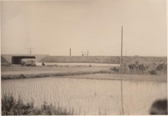 田んぼから見た中央自動車道 1969