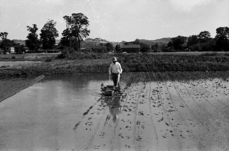 手動式田植え機 - 現万願寺中央公園付近 - 1968
