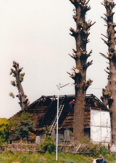 解体中の薬王寺 1988(3)