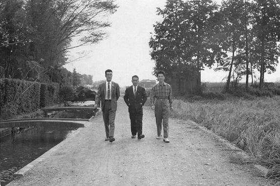 橋本栄萬宅裏の用水 1959(2)